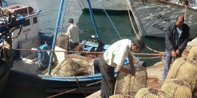 foto/ Agricultura e Mar Atual
